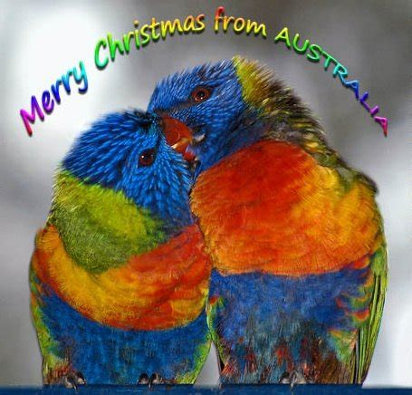 christmas cards  australia