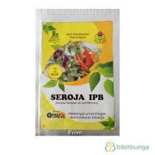 Known You Seed Bau Mustard Benih Sawi Krop 20 Gram cara membuat tanaman cepat tumbuh besar