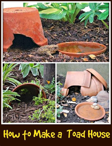 frog house 17 best ideas about toad house on pinterest frog house diy fairy house and lawn feed