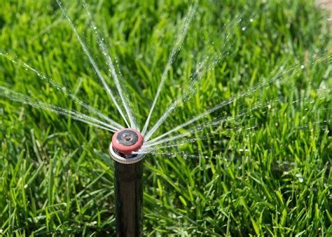 why you should winterize your irrigation system action