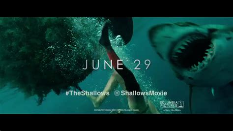 The Shallows the shallows teaser trailer