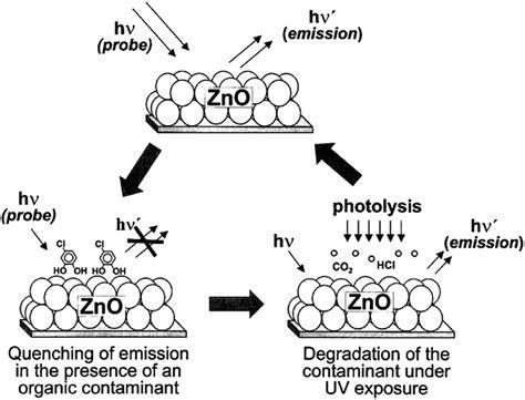 zinc oxide based photocatalysis tailoring surface bulk