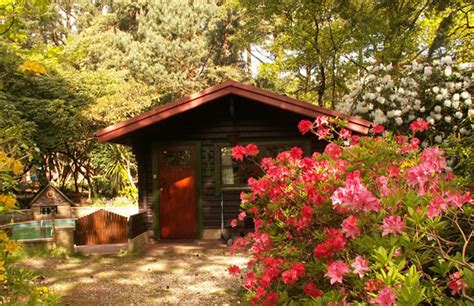 ringwood cottage new forest self catering