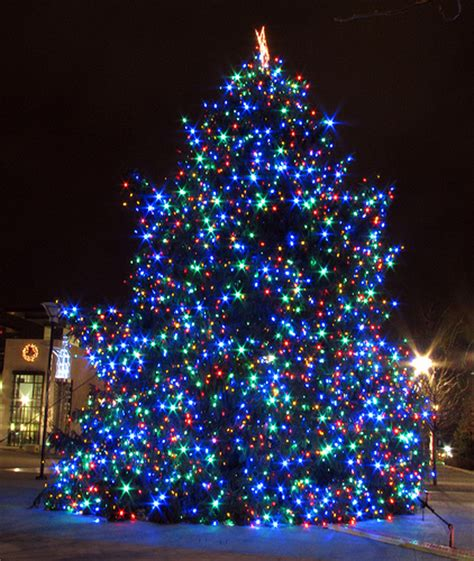 nashville s 2010 christmas tree flickr photo sharing
