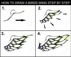 How To Draw A Step By Step Easy Daryl Hobson Artwork How To Draw A Wing Step By Step