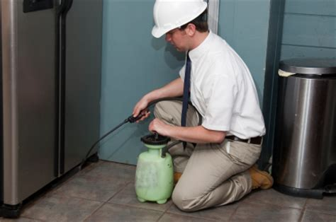 bed bug cleaning services nj ny pa bed bug preparation cleaning services