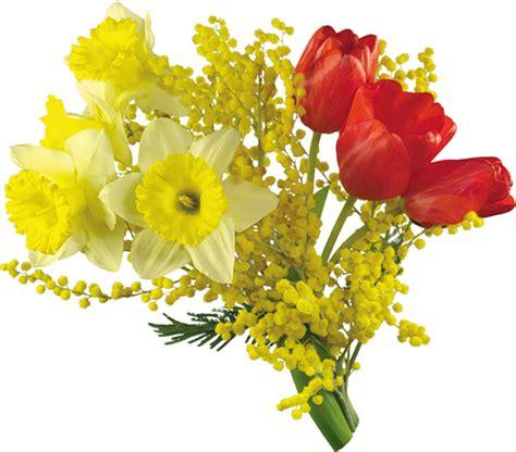 imagenes de flores sin fondo fotoimagenes sinpalabras flores png tubos sin fondo