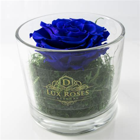 rose in glass preserved roses dlux glass vase fast delivery