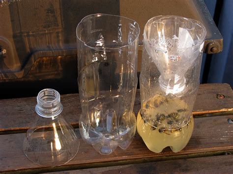 how to make a wasp trap beautiful home and garden