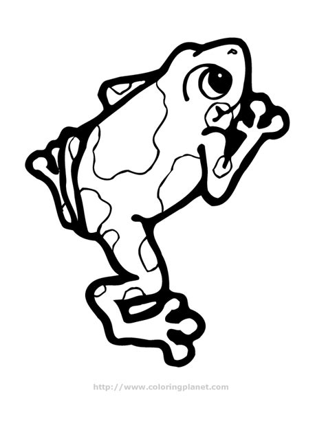 coloring pictures of tree frogs tree frog coloring page clipart panda free clipart images