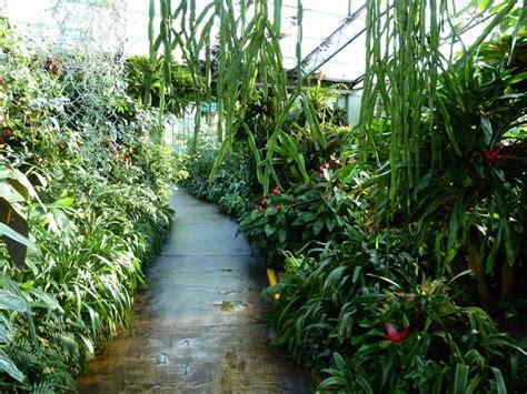 duthie park winter gardens duthie park winter gardens 012 aberdeen gardening