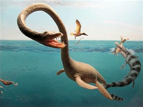 berita unik mitologi monster laut wwwinulpokernet