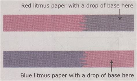 How To Make A Litmus Paper - acids and bases thinglink