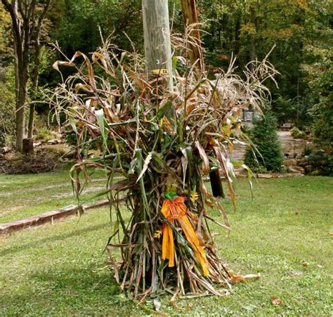where to buy corn stalks for decorating beautiful fall decorations made with dried corn and corn
