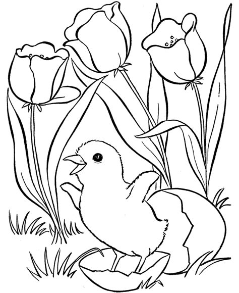 spring color spring coloring pages best coloring pages for kids