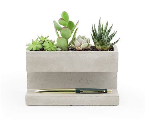 kikkerland concrete planter and pen holder green plant