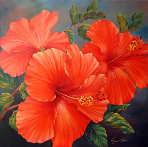 quot coral calypso quot by marianne broome manorhill fine art