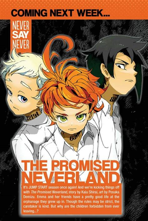 the promised neverland vol 2 the promised neverland review anime amino