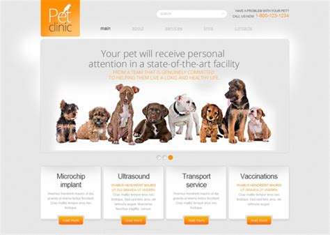 free pet card templates free responsive html5 animal and pets themes