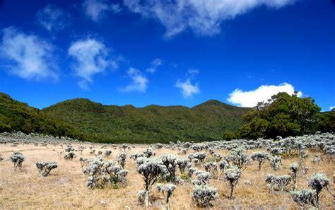 Naik Gunung booking tiket untuk naik gunung wisata nusantara