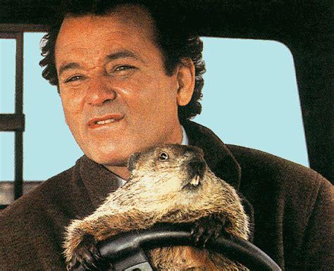 sinopsis groundhog day el d 237 a de la marmota atrapado en el tiempo 1993