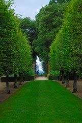 lawnmower man  hidcote manor garden  antonychammond
