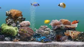 Free Aquarium Screensavers Windows 8