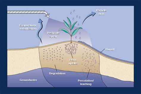 How To Make Home Decoration Fertilizers Pesticides Napierala Home