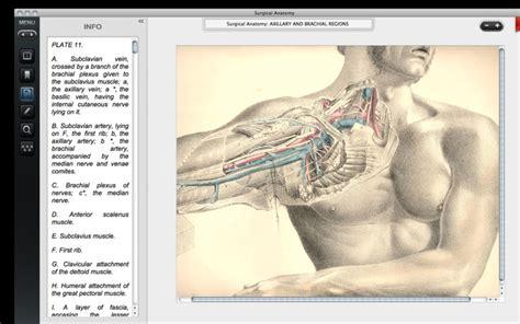 tavole anatomia umana surgical anatomy l anatomia umana a portata di mac e ad