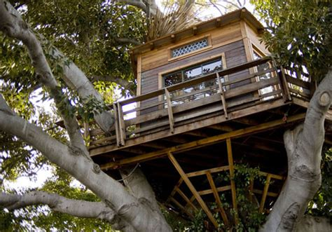 design tree house luxury treehouse designs