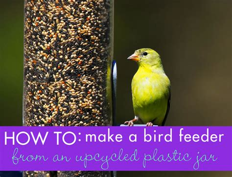 How To Make A Bird Out Of Construction Paper - diy make a bird feeder from an upcycled plastic bottle