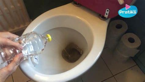 Comment Nettoyer Les Toilettes 4226 by 7 Astuces Pour Des Toilettes Propres Sans Produits Chimiques