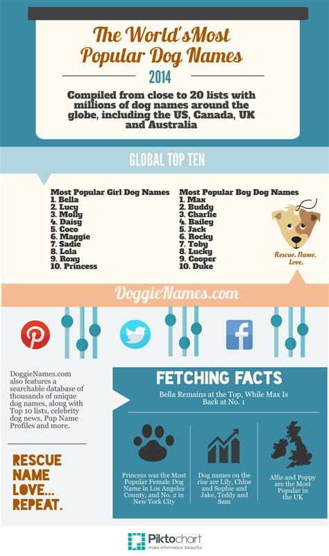 top 10 most popular dog names what are the most popular dog names on dogster