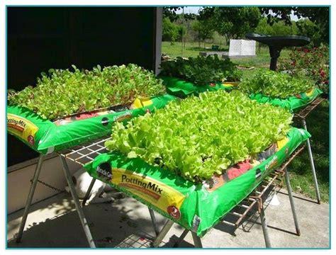 potting soil for vegetable garden