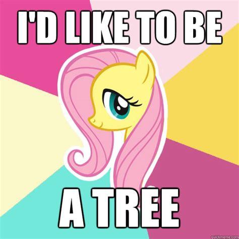 Mlp Fluttershy Meme - fluttershy pony memes