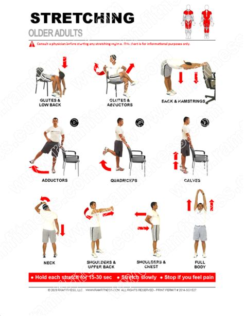 printable flexibility exercises stretching guide for older adults pdf file plus tracking