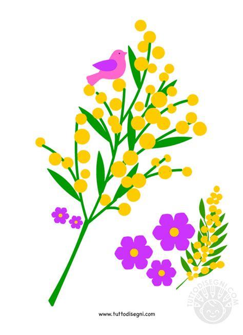 immagini fiori mimosa mimose immagini da stare tuttodisegni