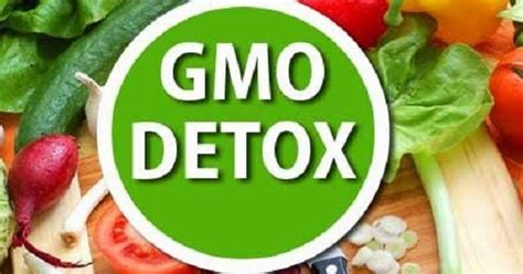 How Does It Take To Detox From Gmos by Organic News How To Detox Your From Gmos And Pesticides