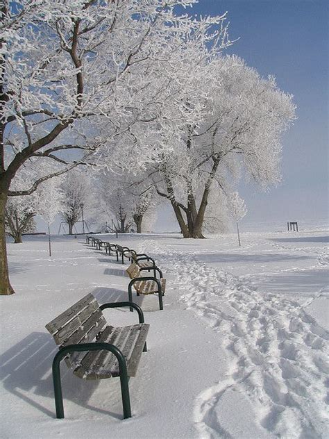 bench winter bench on a snowy day snow snow snow pinterest