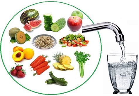 fruit 90 percent water fruits and vegetables to maintain water level in the