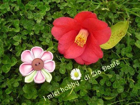 dante fiore i miei hobby di zia dant 232 un fiore tra i fiori