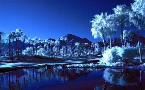 wallpaper blue landscape blue oasis landscape wallpaper wallpaper wallpaperlepi