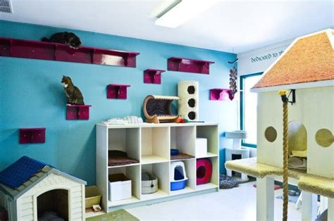 Cat Room Ideas by Cat Room The Litter Bins In The House