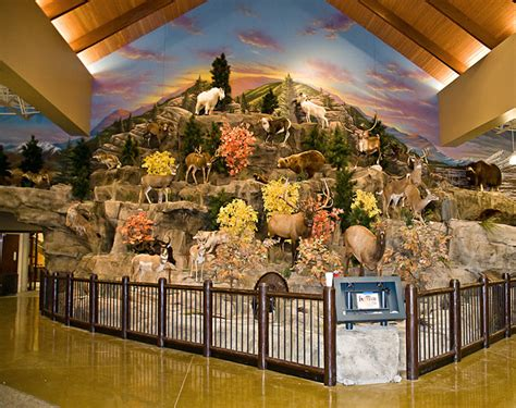 Cabelas Home Decor Cabelas Home Decor 28 Images Cabelas Home Decor My Home 24 Best Cabela S Home Furnishings
