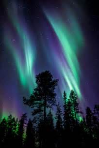 Northern Lights Landscaping Photography Pretty Sky Landscape Trees Northern Lights Colors Nature Finland