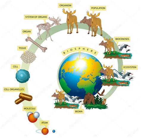 livingroom world living world stock vector 169 lukaves 9388053