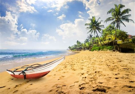 reasons  visit sri lanka telegraph