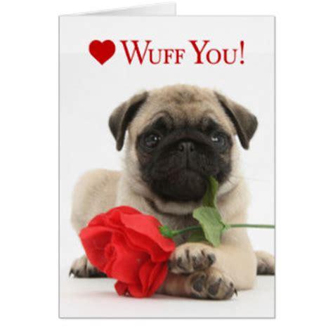 pug valentines card pug cards invitations zazzle co uk