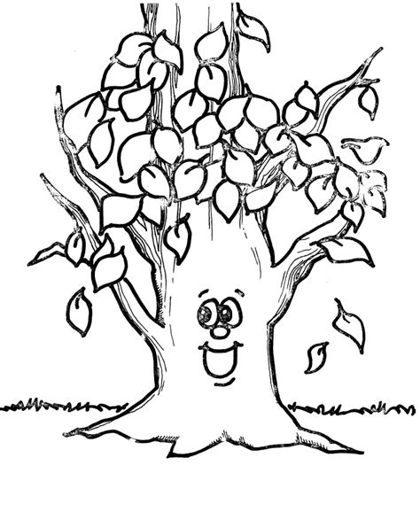 narra tree coloring page coloring pages az coloring pages