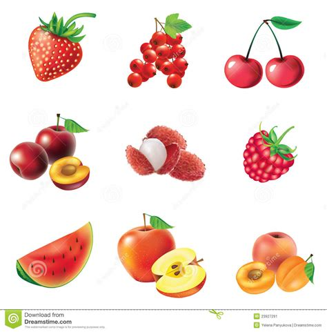 imagenes de verduras rojas conjunto de frutas y de bayas rojas imagen de archivo